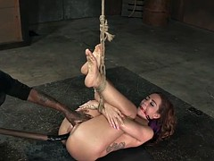 Bdsm submissive squirts while hogtied