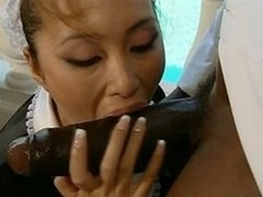 asiatic maid interracial CFNM Blowjob