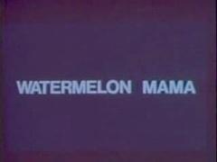 Classic Vintage Retro - Diamondclip - Watermelon Mam